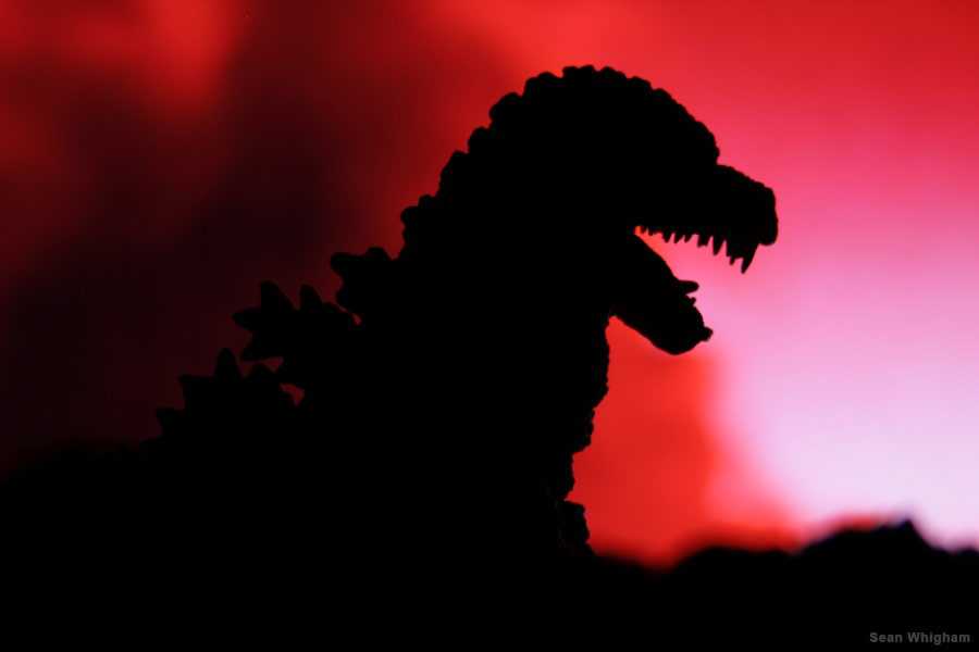 Fan Godzilla Videos and Photos 2013: Sean Whighan
