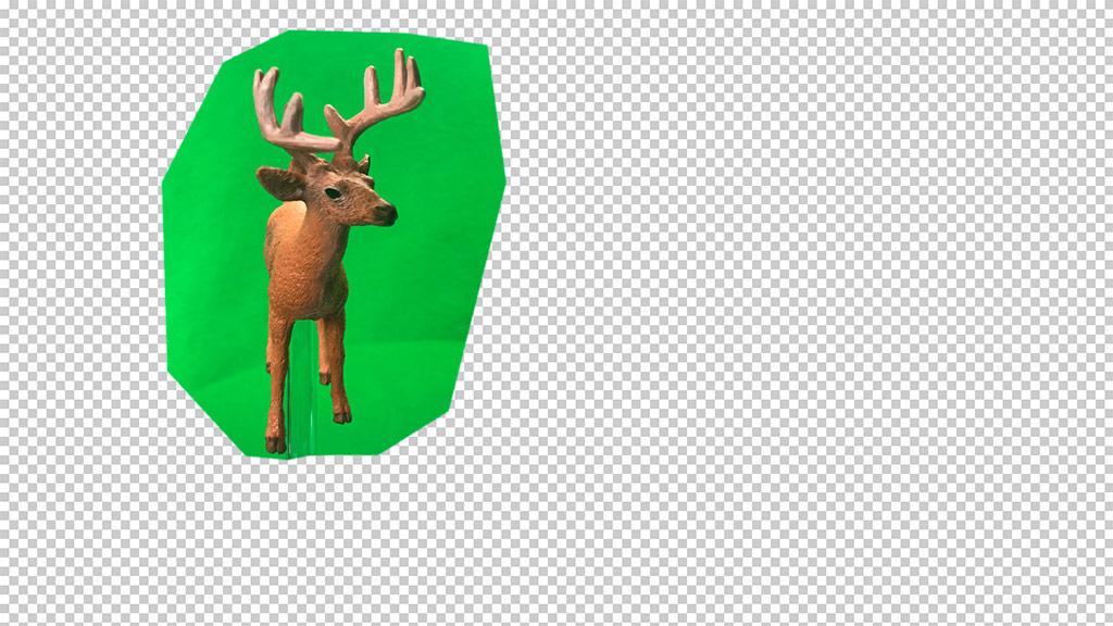 Green screen for Bambi